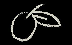 icona-grd-oliva